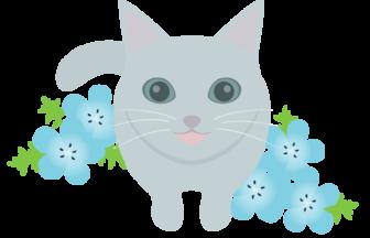ネコ(ロシアンブルー)