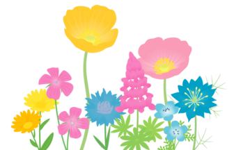 花壇(春の花)