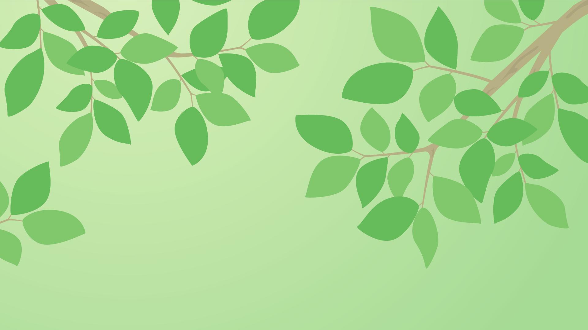 デスクトップ用壁紙(自然・木の枝)